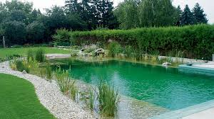 Natural Pools and Ponds